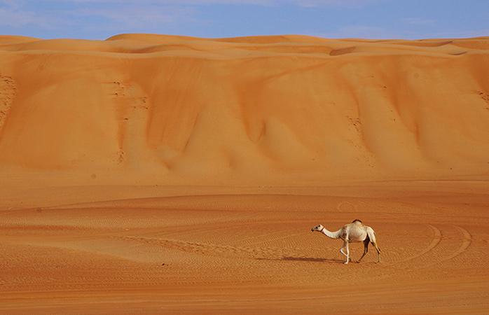 """Maria: """"Oman överraskade mig på alla sätt och vis.."""""""