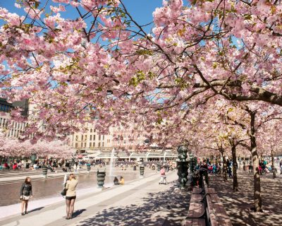 Att göra i stockholm: 24 sevärdheter och upplevelser i staden