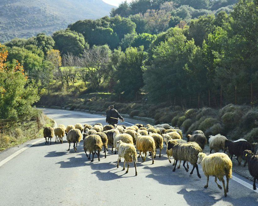 Mycket mer än hyper-turism: Upplev det orörda Kreta